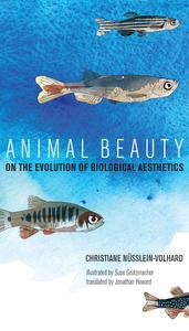 ANIMAL BEAUTY: ON THE EVOLUTION OF BIOLOGICAL AESTHETICS