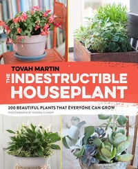 INDESTRUCTABLE HOUSEPLANT
