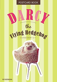 DARCY THE FLYING HEDGEHOG POSTCARD BOOK