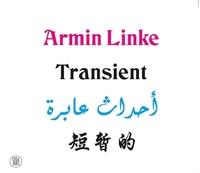 ARMIN LINKE: TRANSIENT